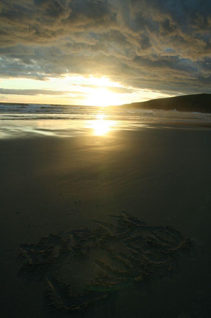 2013_01_Peto-New_Zealand