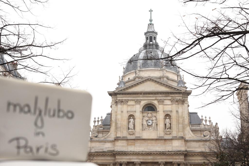 2015_02_Marian-Paris_Sorbonne_University-Paris-France